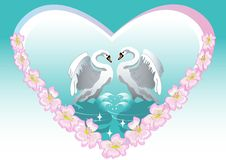 Swan   backgrounds. Swan  illustration design painting backgrounds Stock Photo