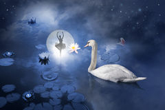 Swan with ballerina at moon. Atmospheric ballerina scene, posing at a water scene with a composition of a full moon behind a night sky, candle lights, sea roses Royalty Free Stock Photo