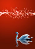 The swan on blue background Stock Image