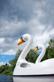 Swan Boat Stock Photo
