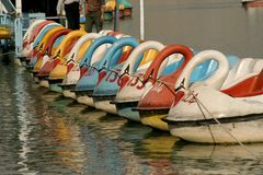 Swan boats at esfehan Stock Photo