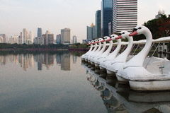 Swan Boats lined up in a large swamp in Benjakitti Park. Swan Boats lined up in a large swamp in Benjakitti Park in Bangkok, Thailand. It is nice scenery in the Stock Photography