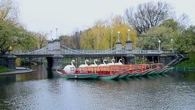 Swan Boats in pond of Boston Public Garden, Boston, USA, stock footage