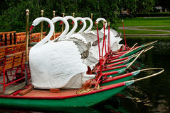 Swan Boats at Rest in the Boston Public Garden Stock Photo
