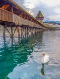 Chapel Bridge, Lucern Stock Images