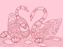 Swan color drawing vector illustration Royalty Free Stock Image