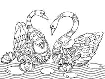 Swan coloring book for adults vector Stock Photography