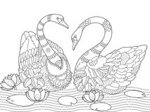Swan coloring book for adults vector Royalty Free Stock Photos