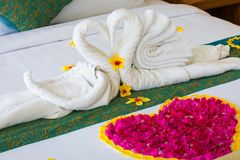 Swan couple put on honeymoon bed with rose petals for honeymoon lover. Swan couple put on honeymoon bed with pink rose petals for honeymoon lover Stock Image