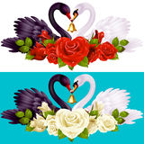 Swan Couple, Roses and Hearts Royalty Free Stock Photos