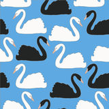 Swan couples on blue background vector seamless pattern, background, wallpaper Royalty Free Stock Photography