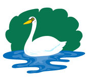 Swan so cute Stock Photography