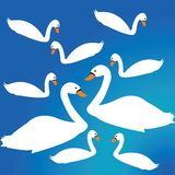 Swan decor Royalty Free Stock Photography