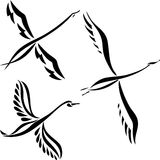 Swan design set Stock Image
