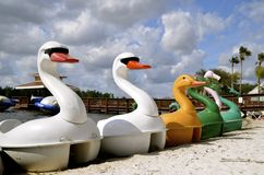 Swan and duck paddle boats Stock Photography