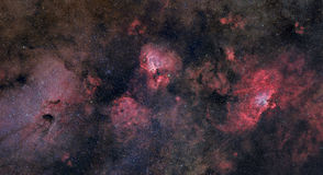 Swan Eagle and Omega Nebula Royalty Free Stock Image