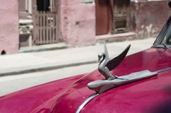 Swan emblem on a vintage car of the now disappeared Packard company, in Havana Cuba. Swan emblem on a vintage car of the now disappeared Packard company, in Stock Image