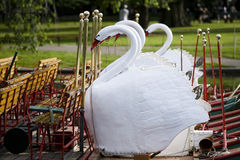 swan för 4 fartyg arkivfoto