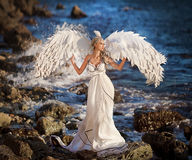 Swan fairy girl on the beach. fairy tale royalty free stock image