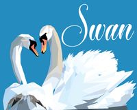 Swan Fall in Love, Birds Couple Kiss, Two Animal Heart Shape pop art stock illustration