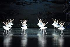 The swan family-ballet Swan Lake Stock Images