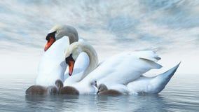 Swan family - 3D render Stock Photo