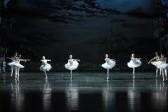 Swan flies over the lake-The Swan Lakeside-ballet Swan Lake Stock Photo