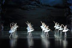 Swan flies over the lake-The Swan Lakeside-ballet Swan Lake Stock Image
