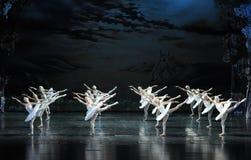 Swan flies over the lake-The Swan Lakeside-ballet Swan Lake Royalty Free Stock Image