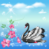 Swan and  flowers Royalty Free Stock Image