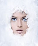 Swan girl Stock Photography
