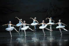 The Swan girl-ballet Swan Lake Stock Photography