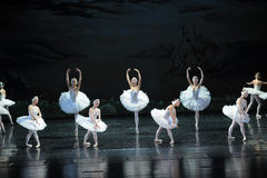 The Swan girl-ballet Swan Lake Royalty Free Stock Images