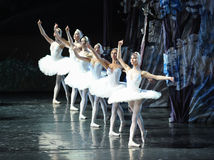 The Swan girls-The last scene of Swan Lake-ballet Swan Lake Royalty Free Stock Images