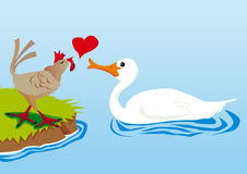 Swan and hen in love Royalty Free Stock Photography