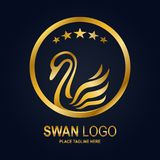 Swan icon design template. Golden swan icon and star in round frame Stock Photography
