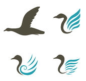 Swan icons isolated on white background Royalty Free Stock Images