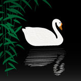 Swan illustration. Beautiful swan vector illustration. White swan swimming gracefully in the pond. White swan on black water with reflection Royalty Free Stock Photo