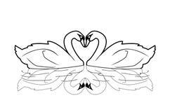 Swan. Illustrator desain .eps 10 Stock Photography