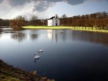 swan kościoła Zdjęcie Royalty Free