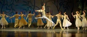 Swan Lake ballet Royalty Free Stock Photo
