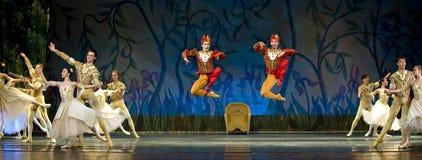 Swan Lake ballet Stock Images