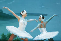 Free Swan Lake Ballet On Ice Stock Image - 82147051
