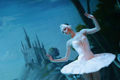 Free Swan Lake Ballet On Ice Royalty Free Stock Photo - 82157145