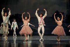 Swan Lake. Ballet Swan Lake by Russian State Ballet performed in Jiangxi Art Center Royalty Free Stock Photo