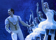 Swan lake ballet Royalty Free Stock Photos