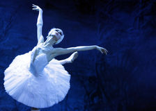 Swan lake ballet Royalty Free Stock Images