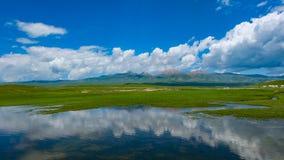 Swan Lake-Bayanbulak Grassland Royalty Free Stock Images