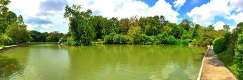 Swan lake, Botanic Gardens, Singapore Stock Photography