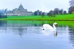Swan on the lake. In Castle Howard, England, UK Stock Photo